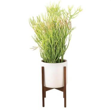 pigment white_pot_planter_walnut_stand_display_grande