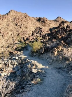 Living Desert_The Living Desert hiking trails 3