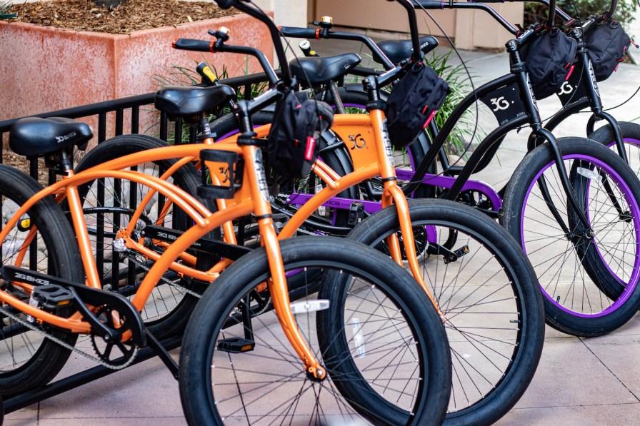 Cassara_Rental Bikes