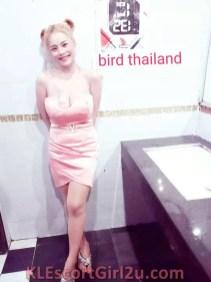 Old Klang Road Escort - Thailand - Bird