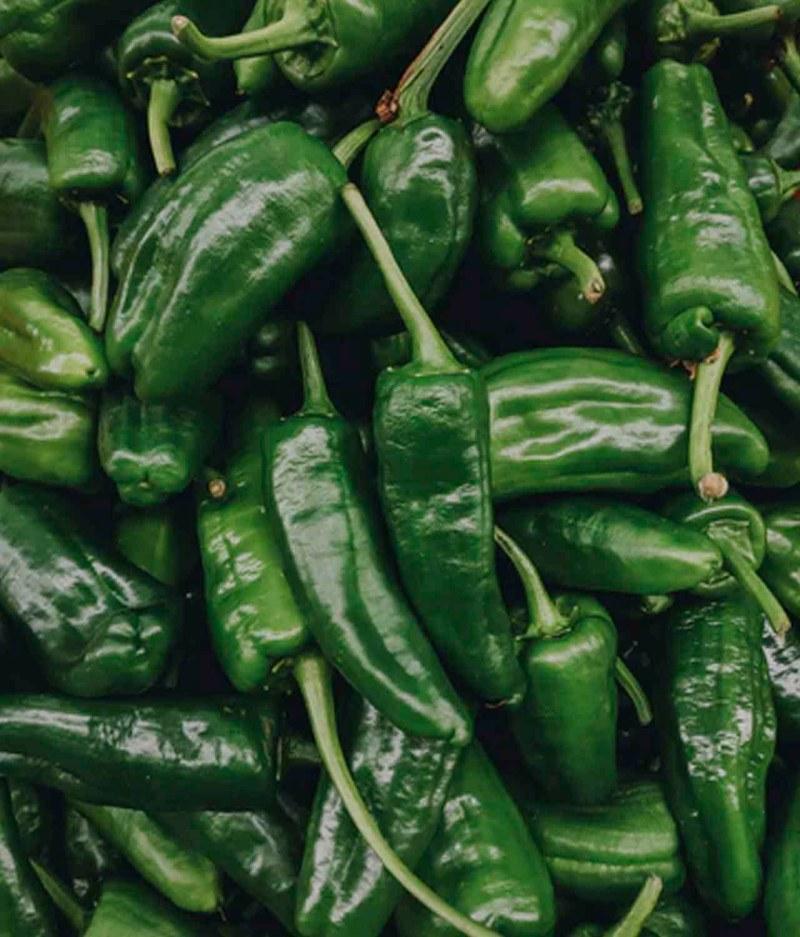 Pimentão Verde Orgânico