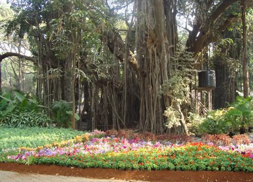 empress garden pune