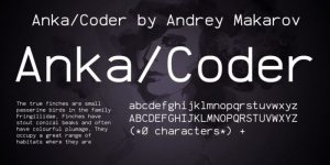 Anka Coder