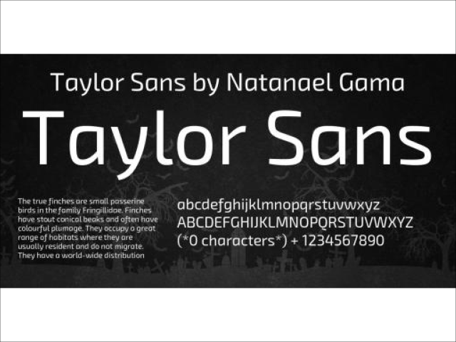 Taylor Sans