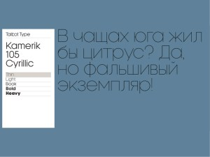 Kamerik 105 Cyrillic
