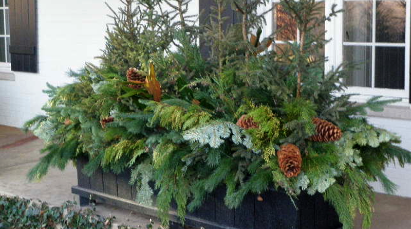 Beautiful Outdoor Winter Planters Canada S Local