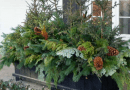 Beautiful Outdoor Winter Planters