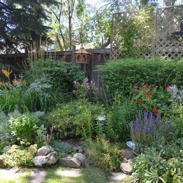 The garden is filled with perennials
