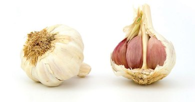 Garlic – The goddess of the edible garden