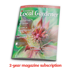 2 year magazine subscription