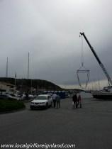 grebbestad sweden oyster-125629