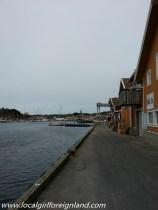 grebbestad sweden oyster-142212