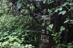 aso kumamoto japan-2991