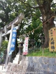 kumamoto-japan-130426