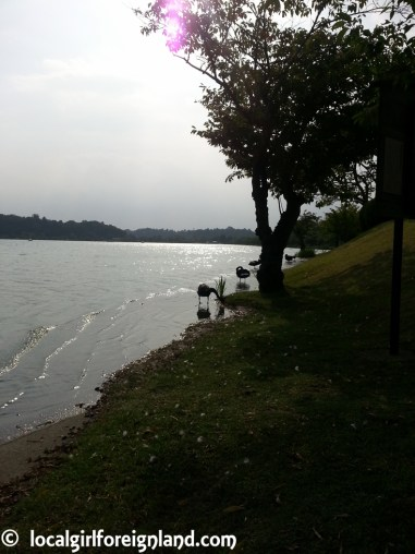 senba-lake-mito-japan-154954