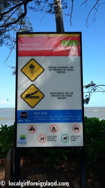 palm-cove-beach-warning-sign-1271