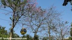baiyun-mountain-cable-car-4367