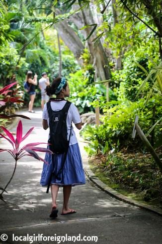 Jardin Botanique de Deshaies Guadeloupe-4055