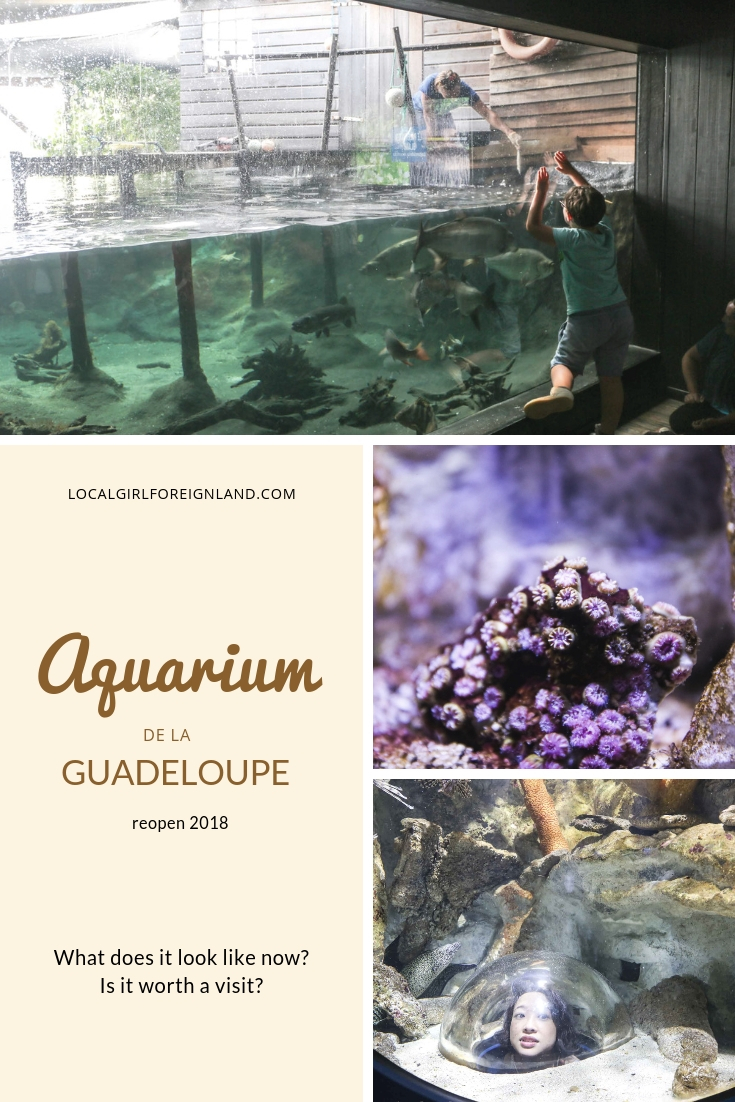 Aquarium-de-la-guadeloupe-reopen-review.jpg