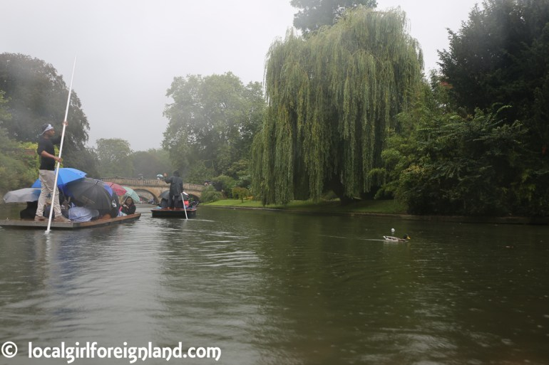 cambridge-punting-in-the-rain-2773