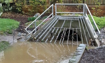 Integrating stormwater requirements: NPS-UDC puts the cat among the environmental pigeons