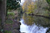 Darent river
