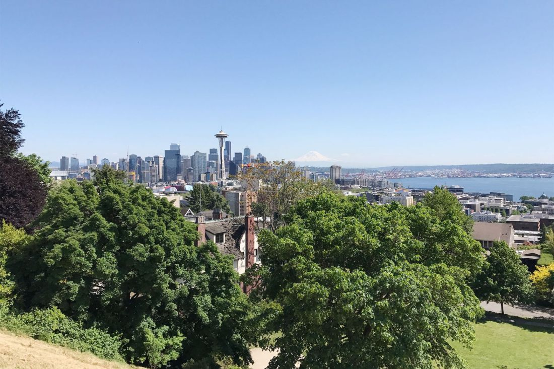 Trees and Seattle city skyline