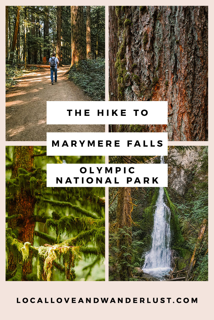 A Hike to Marymere Falls | Local Love and Wanderlust