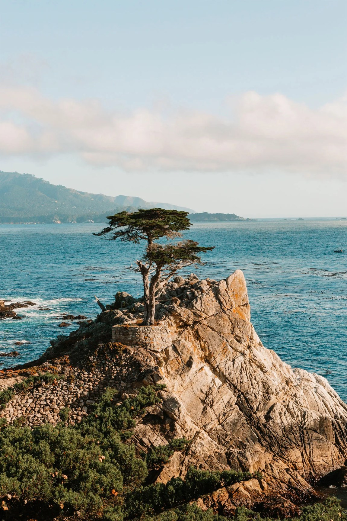 A lone cypress on a rocky point jutting out into the ocean on the 17-Mile Drive | as seen on the Local Love and Wanderlust Blog