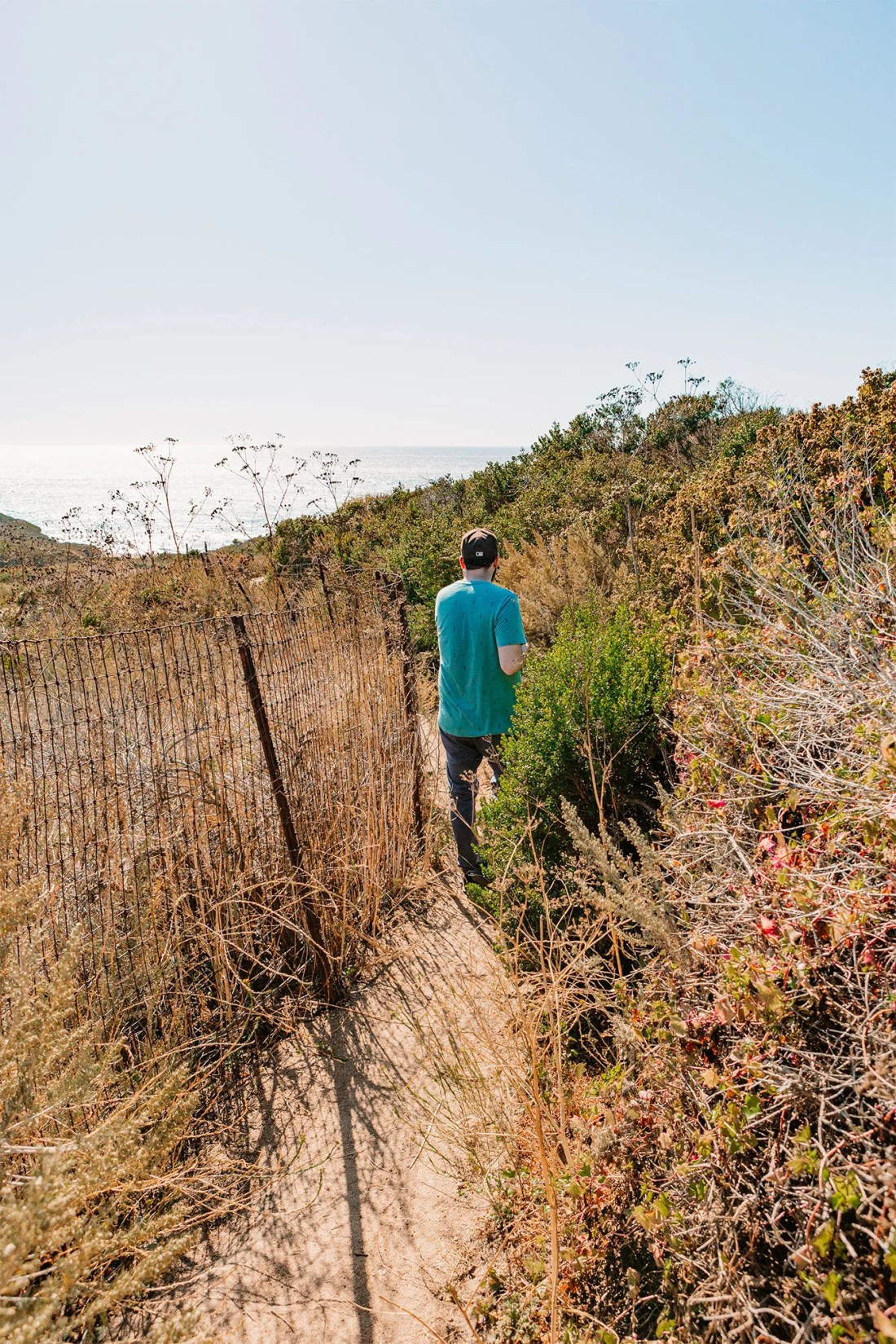Calla Lily Valley in Big Sur, California | as seen on the Local Love and Wanderlust Blog
