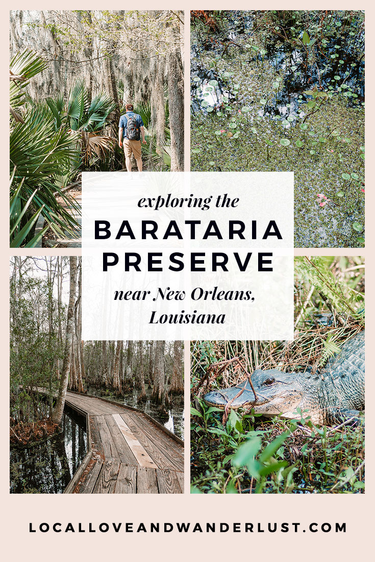 Barataria Preserve just outside of New Orleans, Louisiana