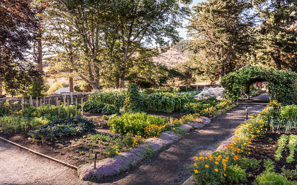 Gardens at Otahuna Lodge