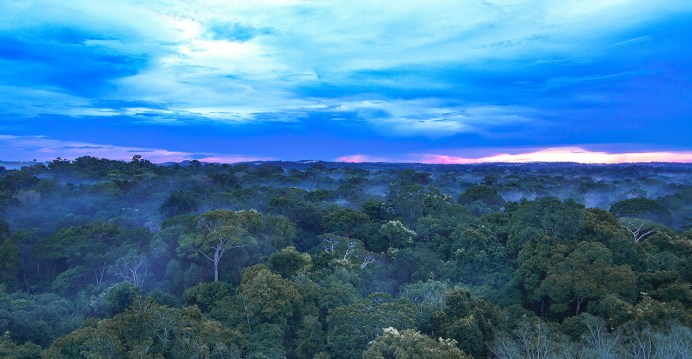 Brazil's Best Ecolodges: How Your Next Trip Can Help Protect the Amazon