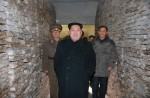 A look at North Korea's Kim Jong Un - 43
