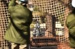 Tokyo zoo stages'zebra escape' - 16