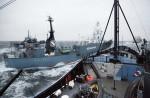 Japan keeps hunting whales - 3