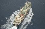 Japan keeps hunting whales - 6