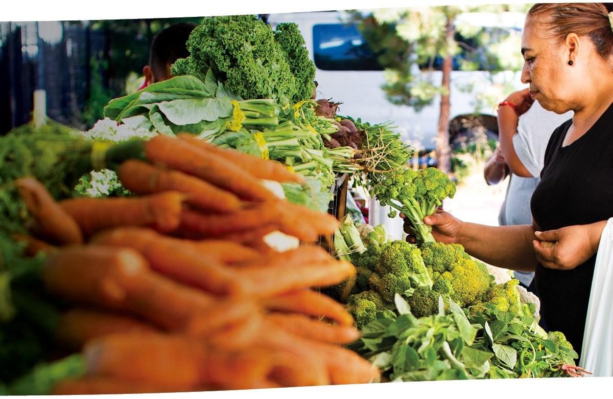 Fresh Approach EPA market