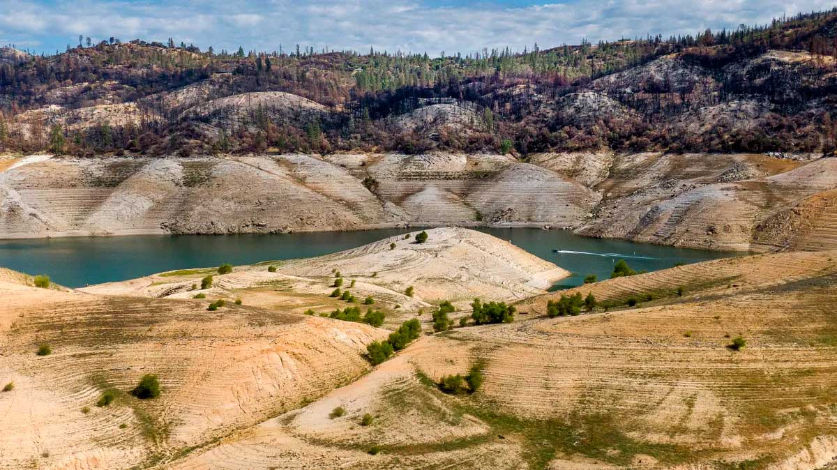 California regulators ban Delta pumping as state faces 'dire water shortages'