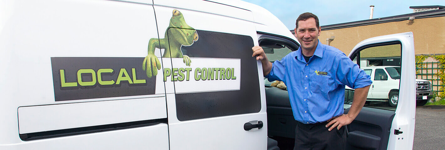 Local Pest Control Vancouver  Rodent Removal & Bug