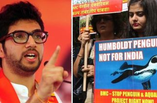 Aaditya Thackeray, (left) Protesters opposing the decision to bring penguins to Mumbai