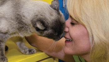 Beth Felker Plano Animal Shelter