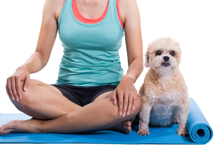 doga yoga mat studio