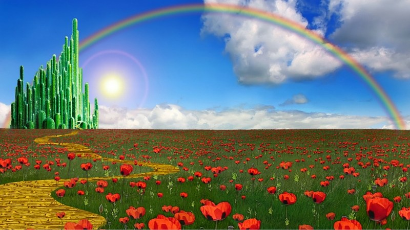 Wizard of Oz Shine Plano