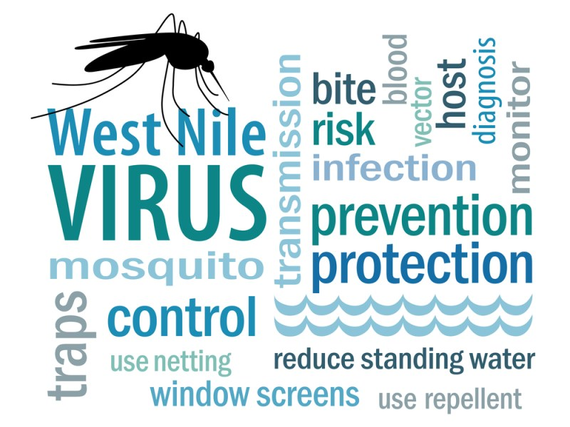 West Nile human case in Plano 2016