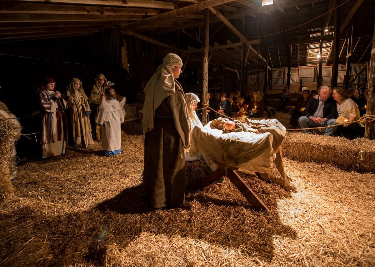nativity festivity