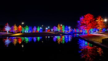 Vitruvian lights holiday events