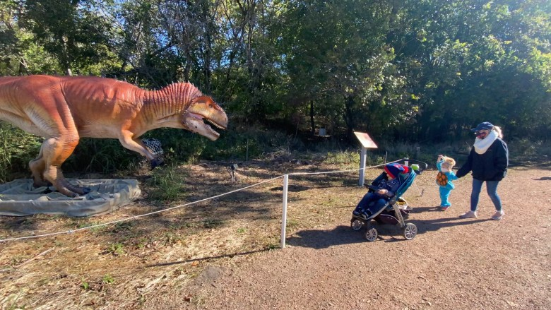 dinosaurs live! at the heard museum, heard natural science museum & wildlife sanctuary best things to do