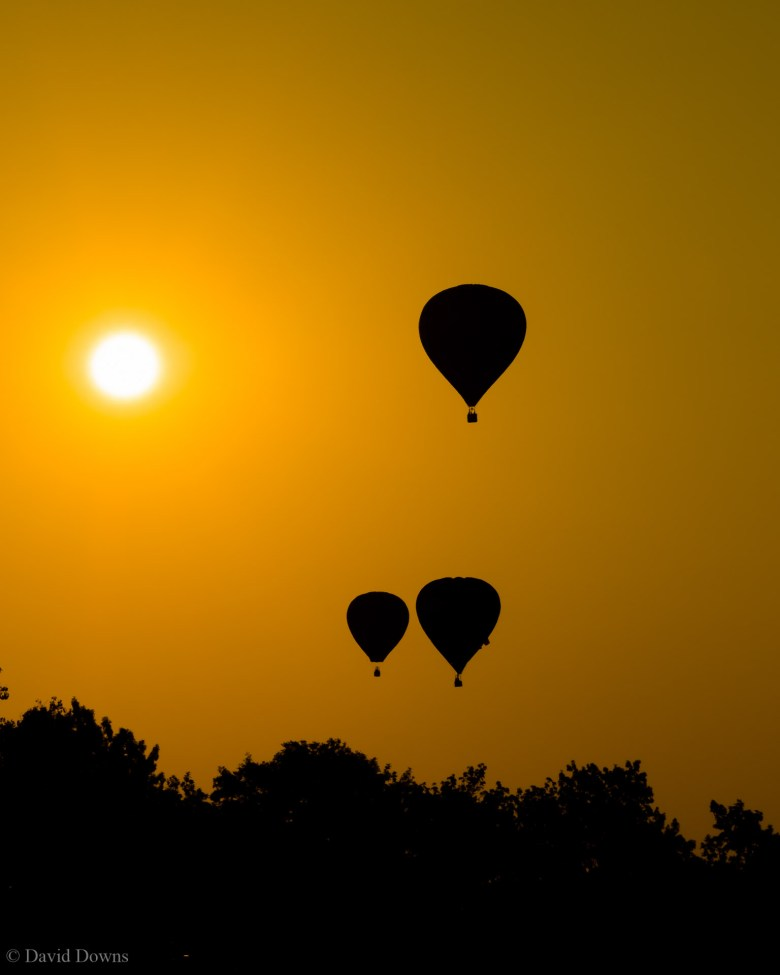 the highly-anticipated plano balloon festival has been canceled for 2021.