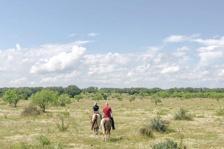 horseback riding at the jl bar ranch, resort & spa.